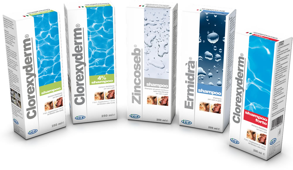 gruppo-shampoo